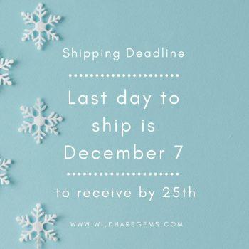 Shipping deadline Instagram Post