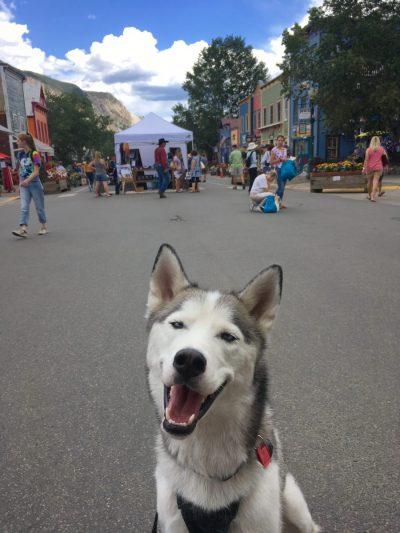 Halfdan at the Paragon Peoples Fair in Crested Butte